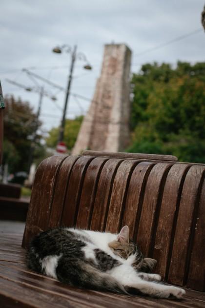 0568_Istanbul