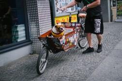 1366_Berlin