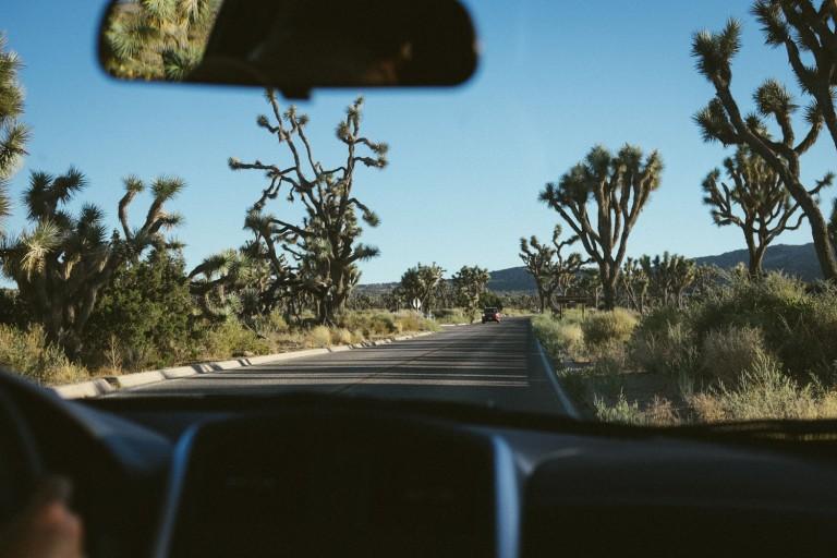 799_SD-Desert