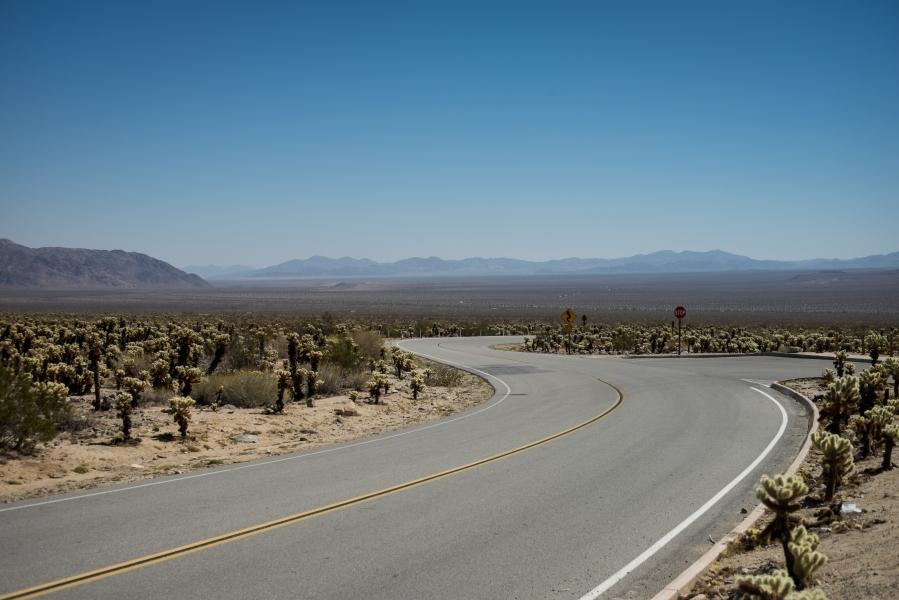 481_SD-Desert
