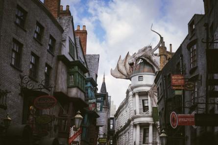 Potter-15