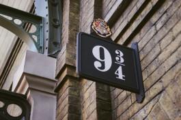 Potter-44