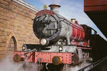 Potter-46