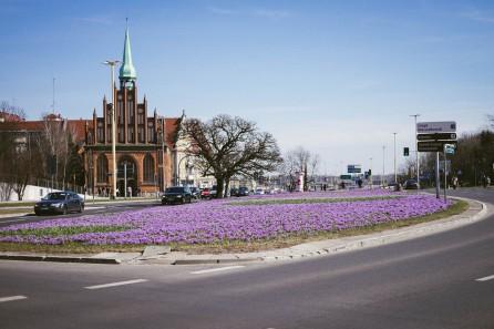 Szczecin-29